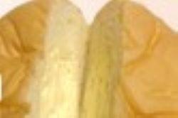 清水屋の生クリームパンの味の店舗と口コミは?賞味期限と値段は紹介!