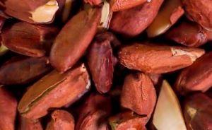 タマチャンショップのピリナッツの柔らかい食感の低糖質をまとめとうまい口コミは?値段・賞味期限と買い方の紹介!
